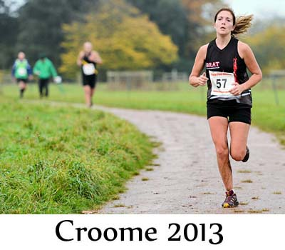 race pictures croome capability canter 2013